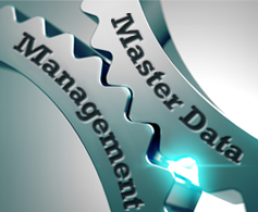 Master Data Management