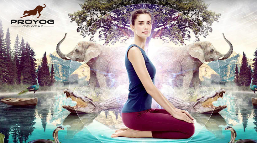 Proyog partners with Vinculum to promote 'Authentic Yoga'
